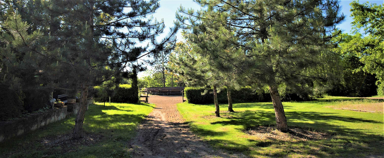 Prostředí u koní v parku Radonice